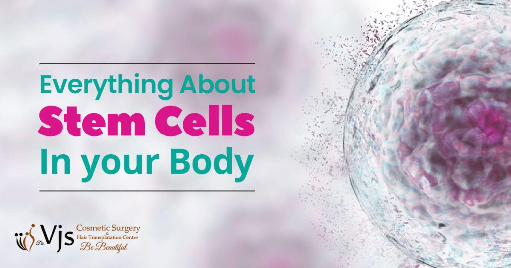 What is stem cells Therapy and explain how do stem cells work in your body?