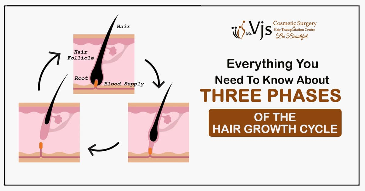 Everything you need to know about three phases of the hair growth cycle